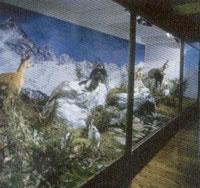 Museo del fiume Po
